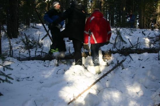 Kácení stromu za pomoci tepláků!