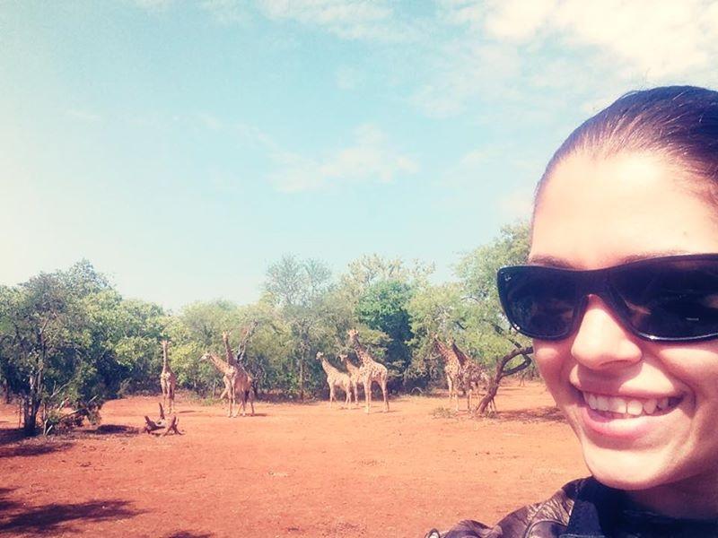 4-huntress-giraffes