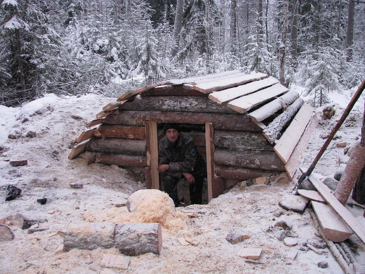 What would this type of shelter design be named? : Bushcraft