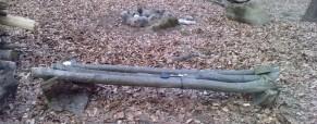 Výroba lavičky/postele v lese – zajímavý tip