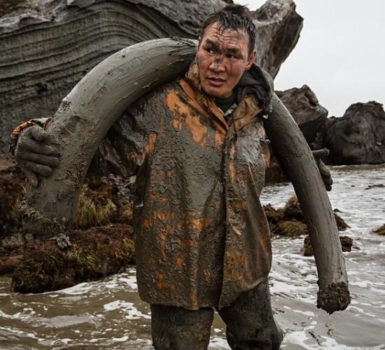 Těžba mamutoviny na Sibiři – fotoreportáž